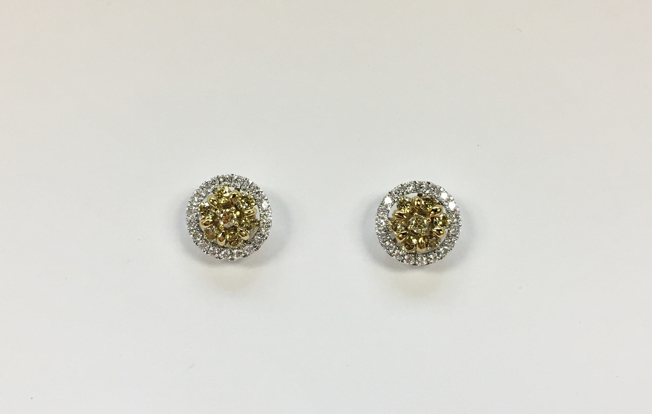 Half Carats TW Diamond Earrings in 18K Gold